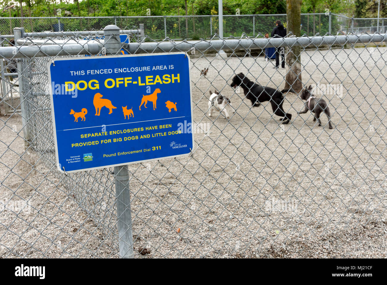 olympic-village-off-leash-dog-park-in-hi