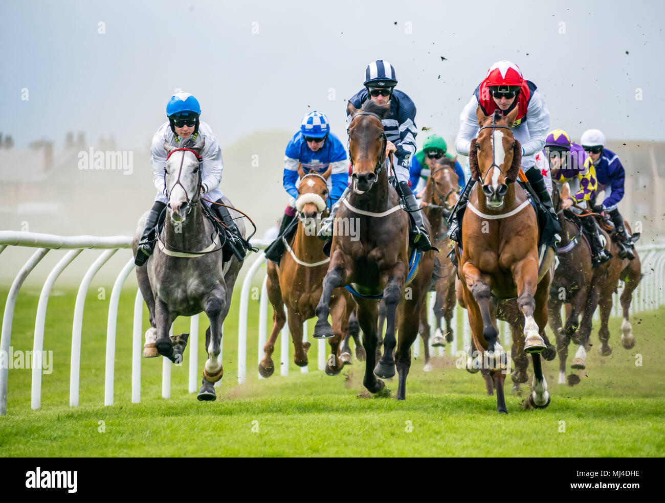 Musselburgh, Scotland, 4 May 2018. Musselburgh Race Course, Musselburgh, East Lothian, Scotland, United Kingdom. Race horses thunder past at the afternoon flat racing meet. The 3.10 Jackson Boyd Lawyers-More than Just Handicap Stock Photo