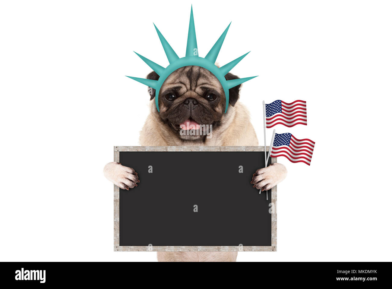 smiling pug puppy dog holding up American flag and blank blackboard sign, wearing lady Liberty crown, isolated on white - Stock Image