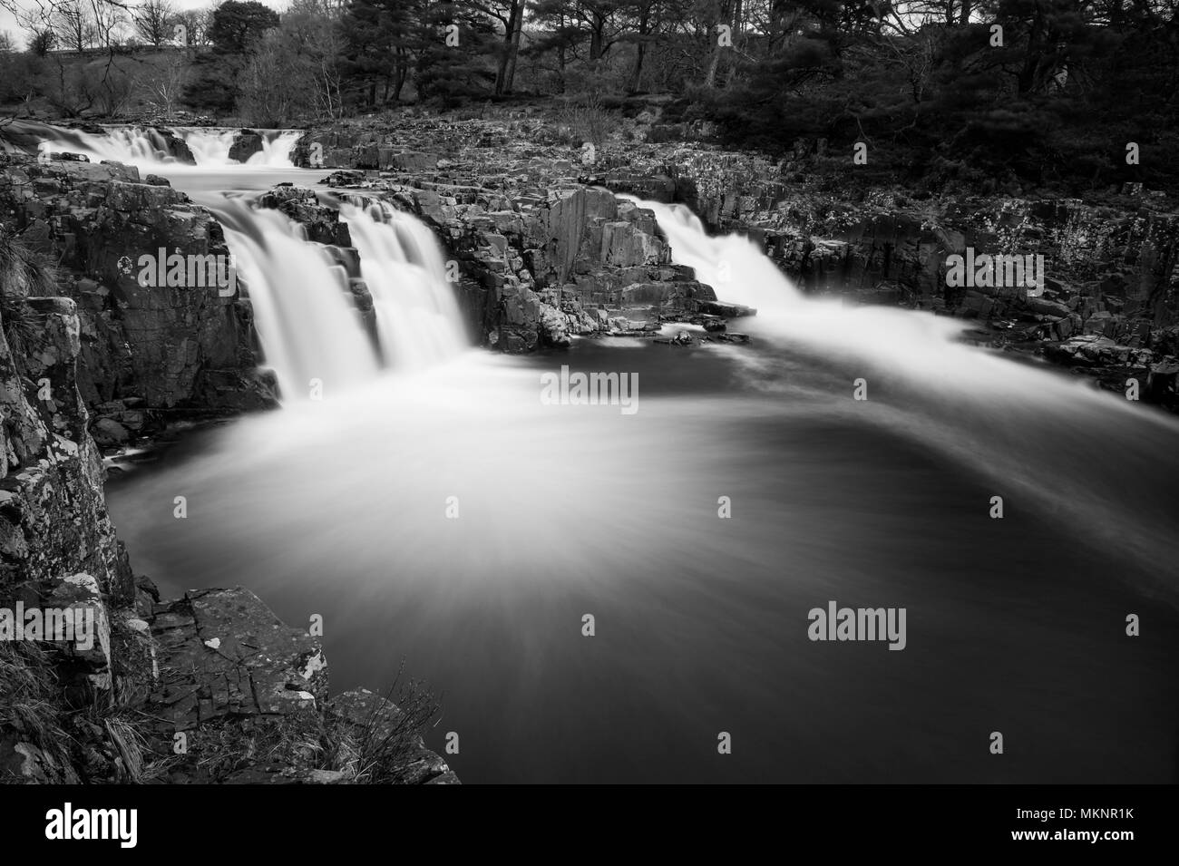 A long exposure black and white image of Low Force Waterfalls in Teesdale, North Pennines AONB - Stock Image