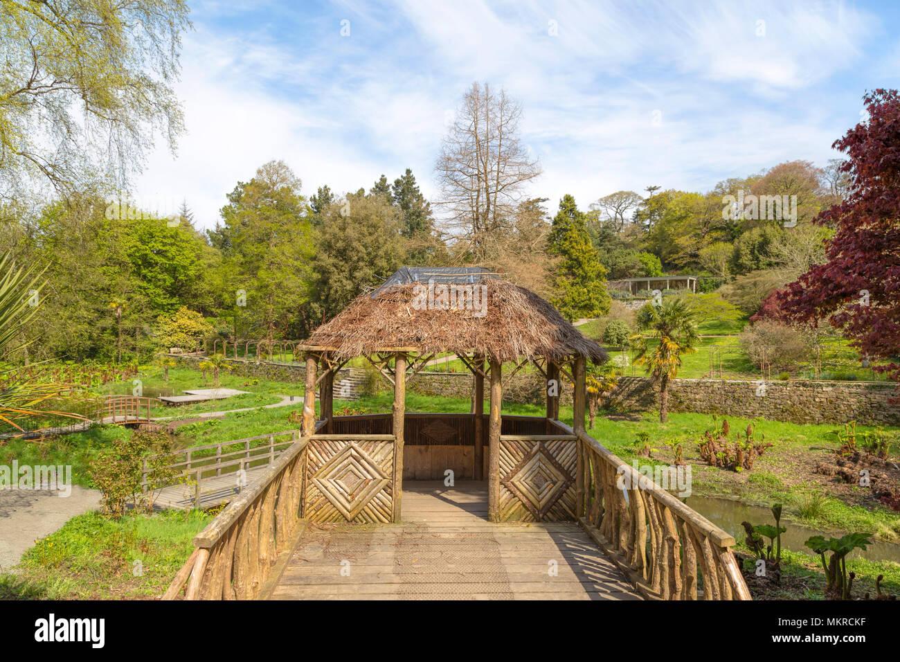 Viewpoint in the Water Garden or Bog Garden at Penrhyn Castle ...