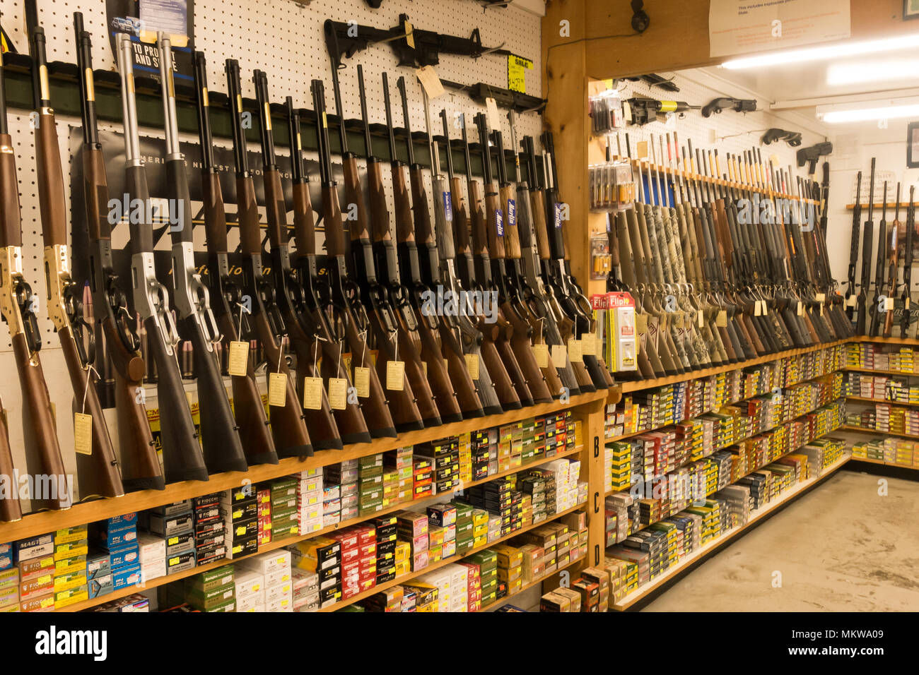 A display of rifles and ammunition in a gun shop in the Adirondack Mountains, NY USAStock Photo