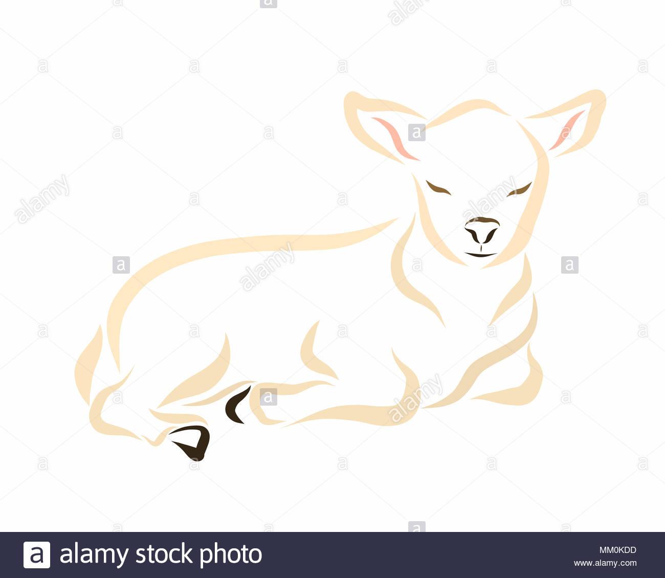 Sleeping Lamb Or Calf Pet Or Christian Symbol Stock Photo