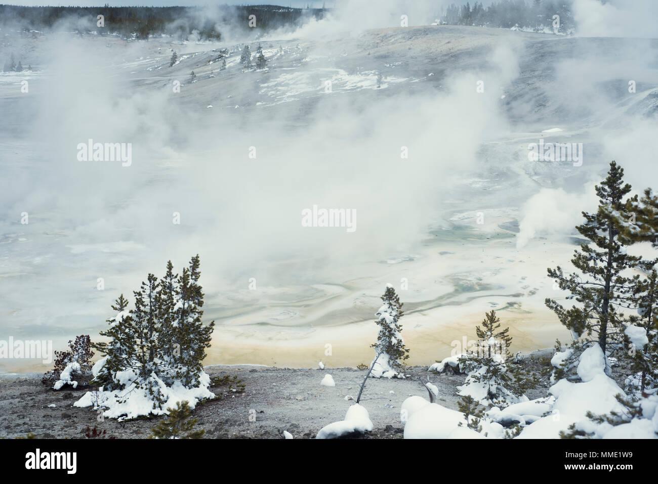 Norris Geyser Basin, Yellowstone National Park, Wyoming, United States - Stock Image