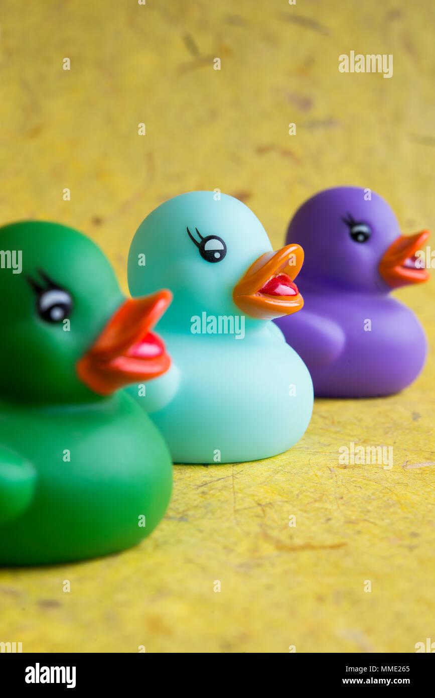 Still life of three colourful rubber ducks - Stock Image
