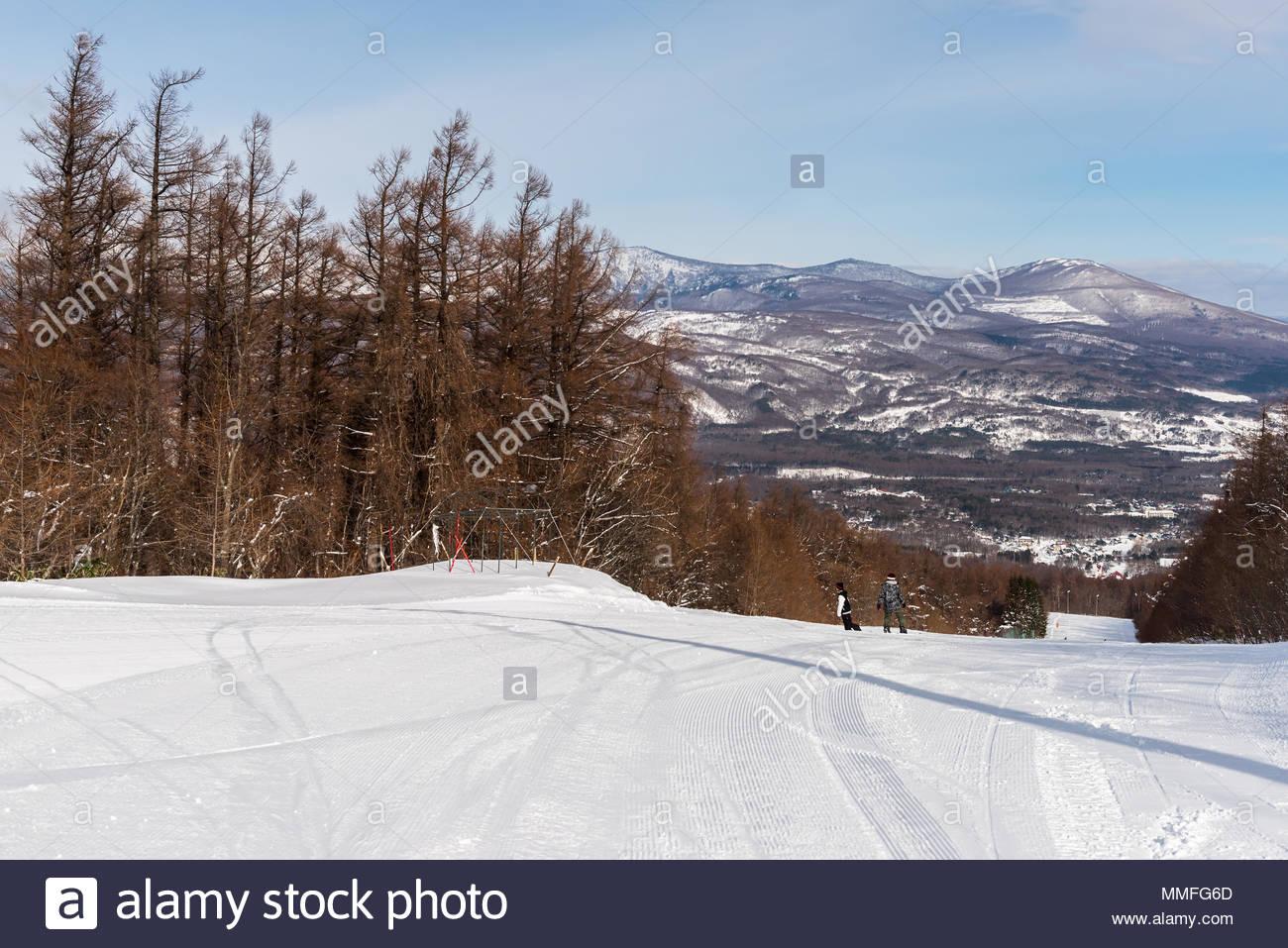 landscape of hachimantai ski resort in winter, iwate, japan stock