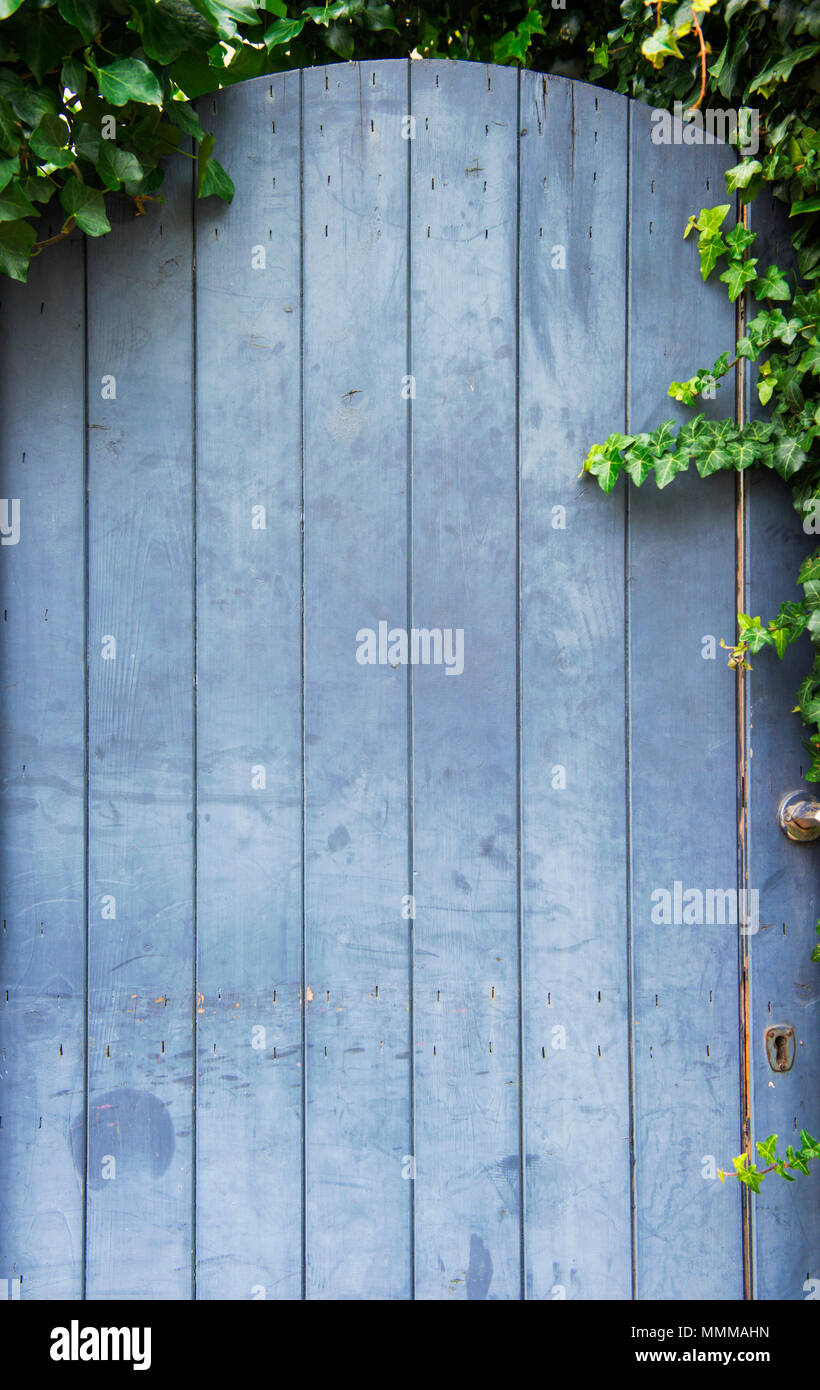 Close-up of a blue garden gate - Stock Image