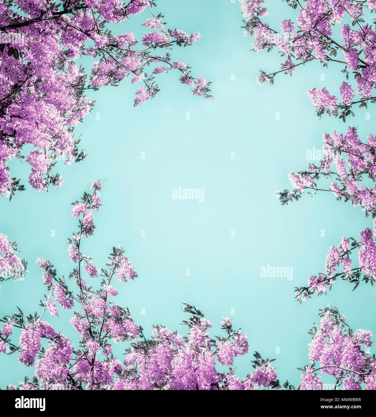 Beautiful Floral Background With Purple Lilac Blossom On Light