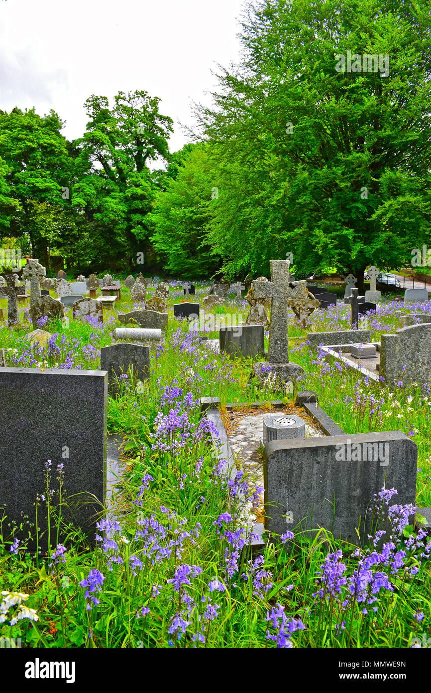 The Pretty Graveyard At St Teilos Church In Merthyr Mawr Near