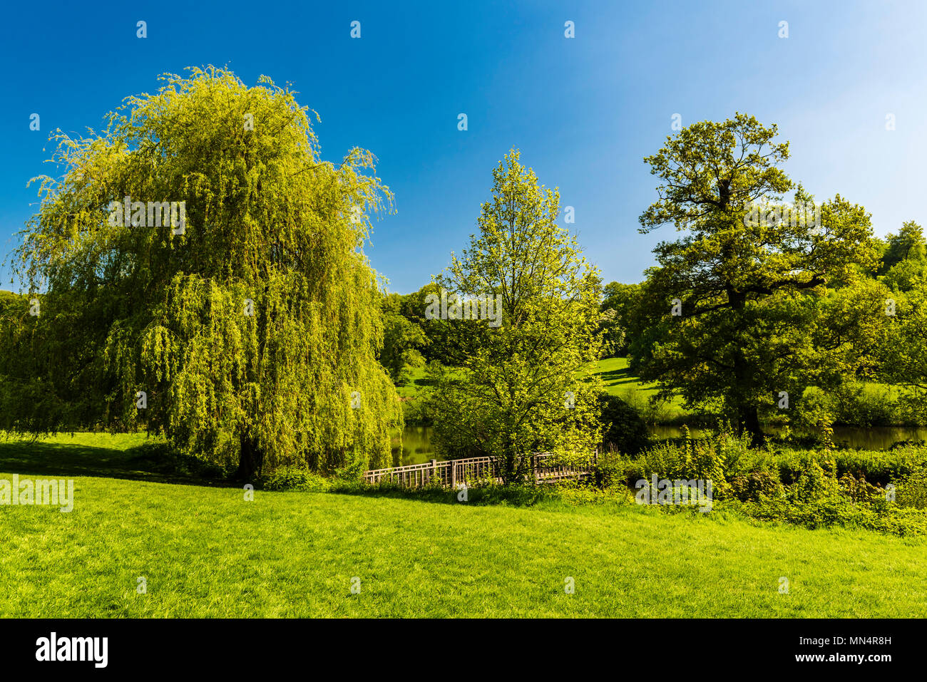 Three trees by the bridge at Chartwell, Kent, UK - Stock Image