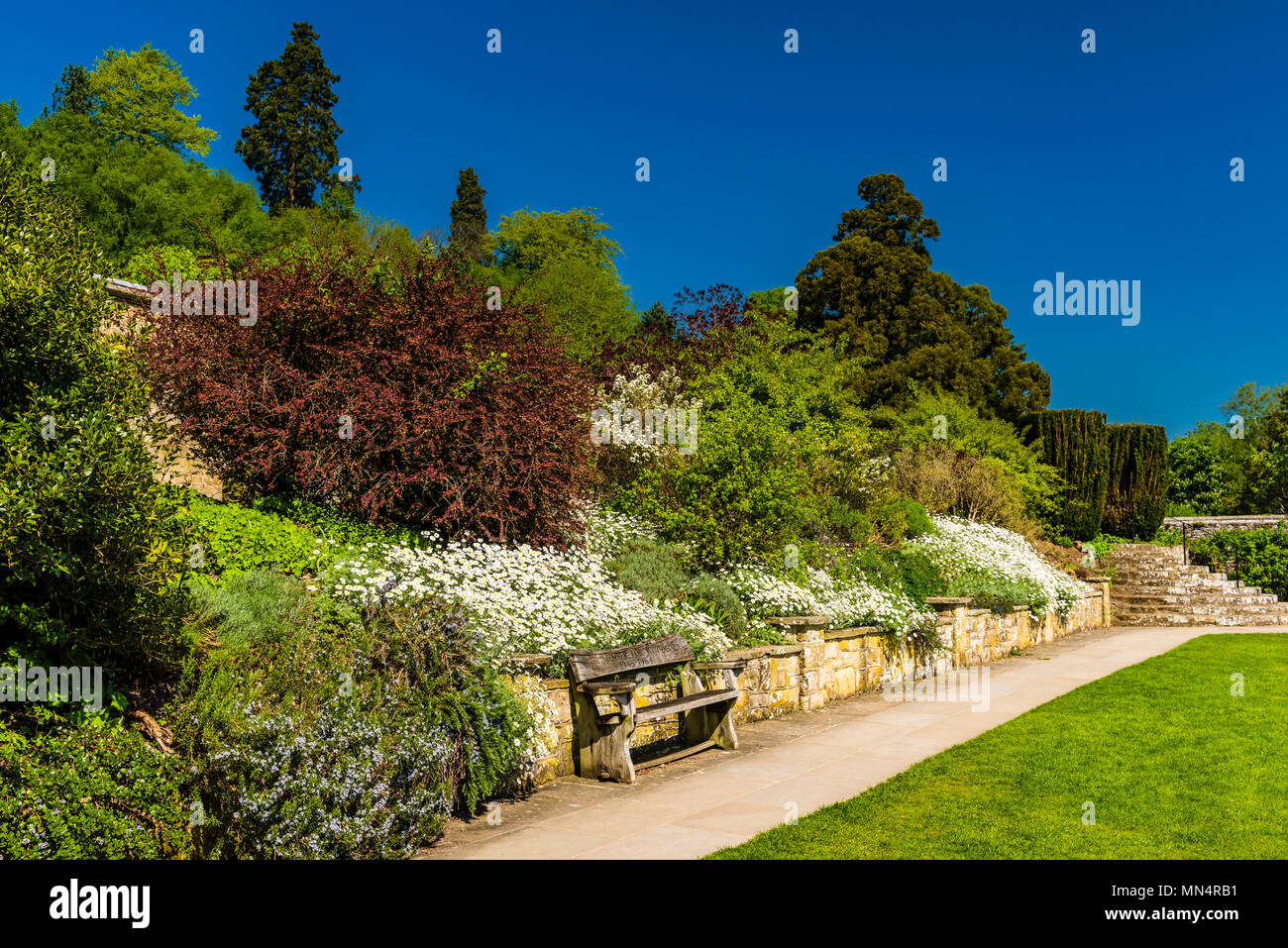 Churchill's bench in the spring sun at Chartwell, Kent, UK - Stock Image