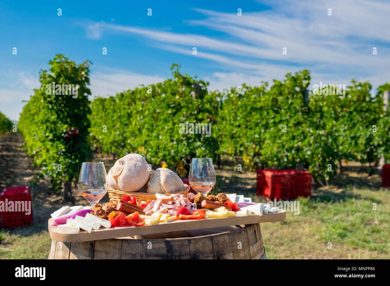 Traditional Romanian food plate with wine and vineyards in the background. Cheese, bread, sausages,  onions and red wine in glass - Stock Image