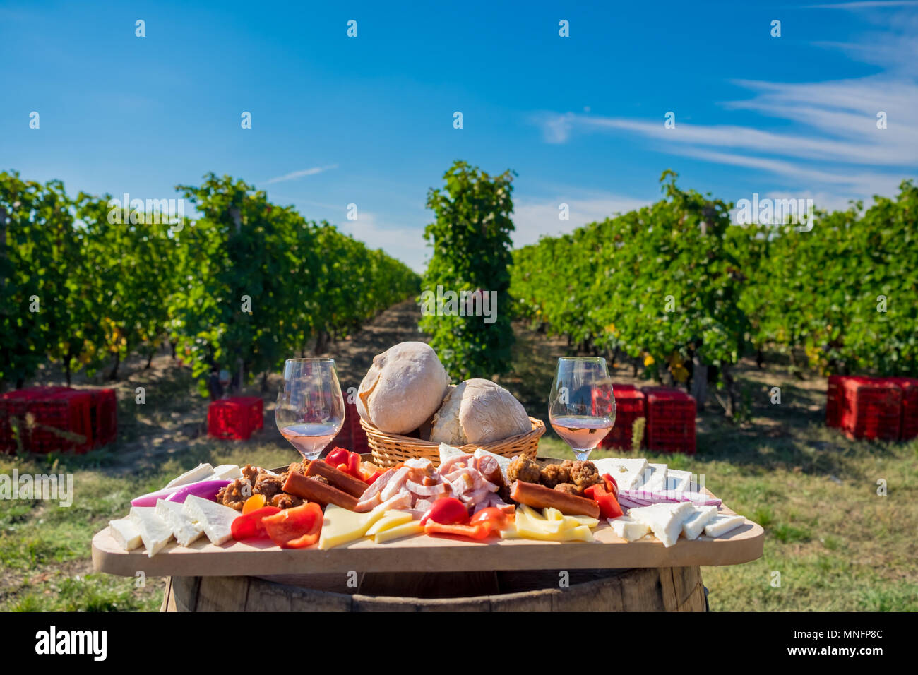 Traditional food plate with wine and vineyards in the background. Cheese, bread, sausages,  onions and red wine in glass - Stock Image