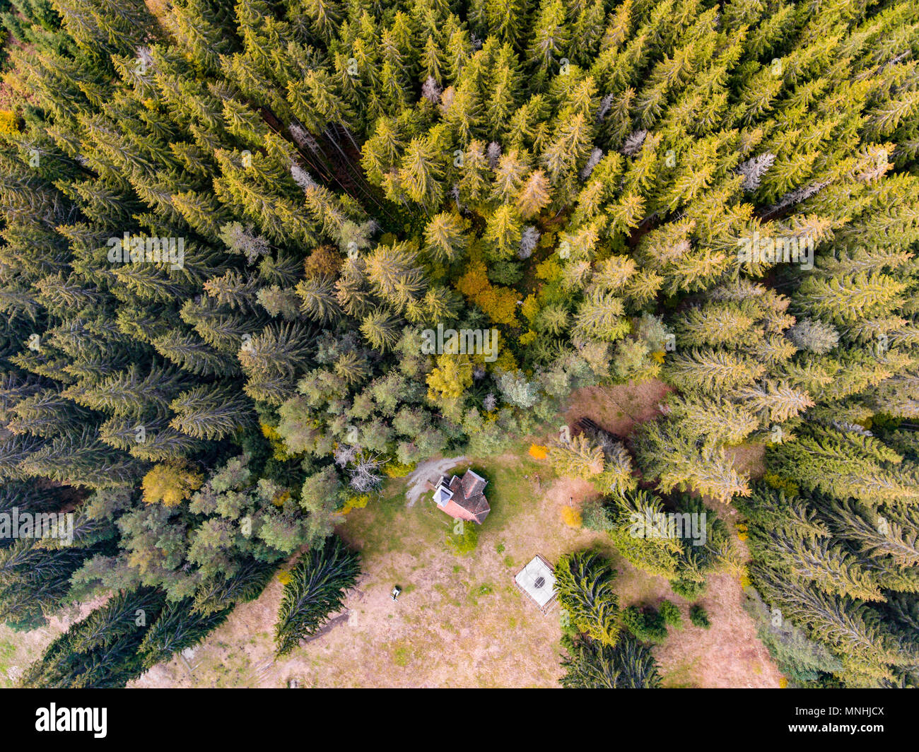 Church in the forest. Aerial View - Stock Image