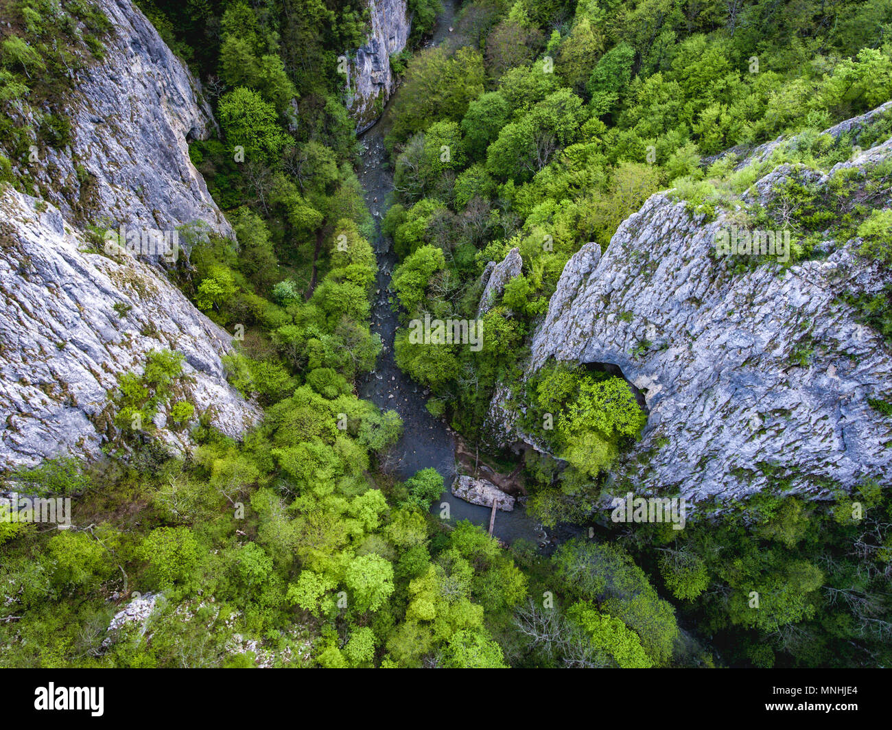 Varghisului Gorges in Covasna and Harghita county, Transylvania, Romania. Entrance to the three caves visible. Aerial view from a drone. - Stock Image