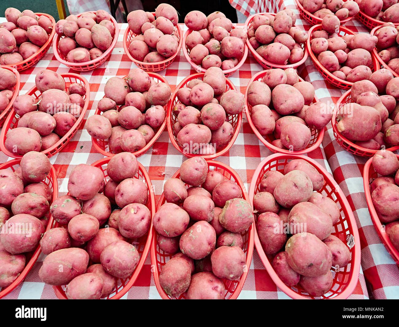 Fresh new potatoes of new harvest on display in baskets, for sale at the local farmers market in Montgomery Alabama, USA. - Stock Image