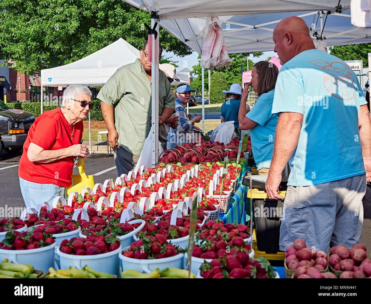 Senior or elderly woman shopping for fresh produce at a local farmer's market in Montgomery Alabama, USA. - Stock Image