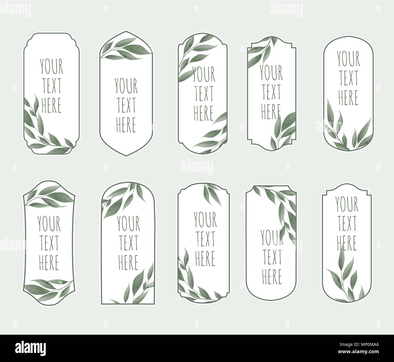 vector set vintage labels with green leaves frame border with copy