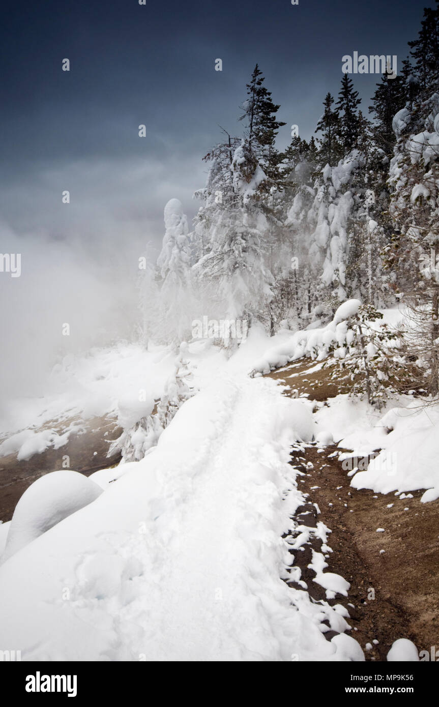 Winter in Yellowstone National Park, Wyoming, USA - Stock Image