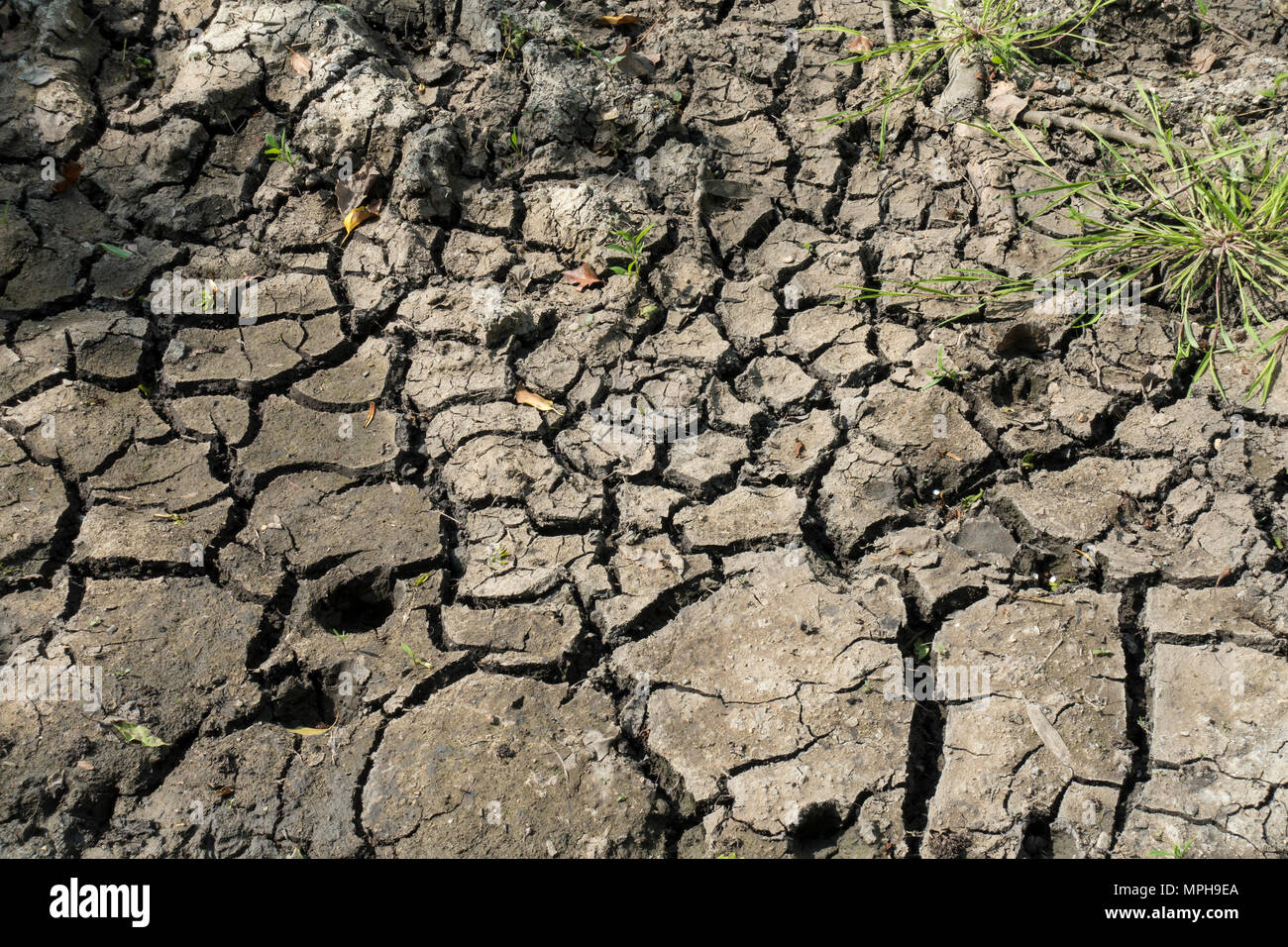 cracked-dry-ground-MPH9EA.jpg