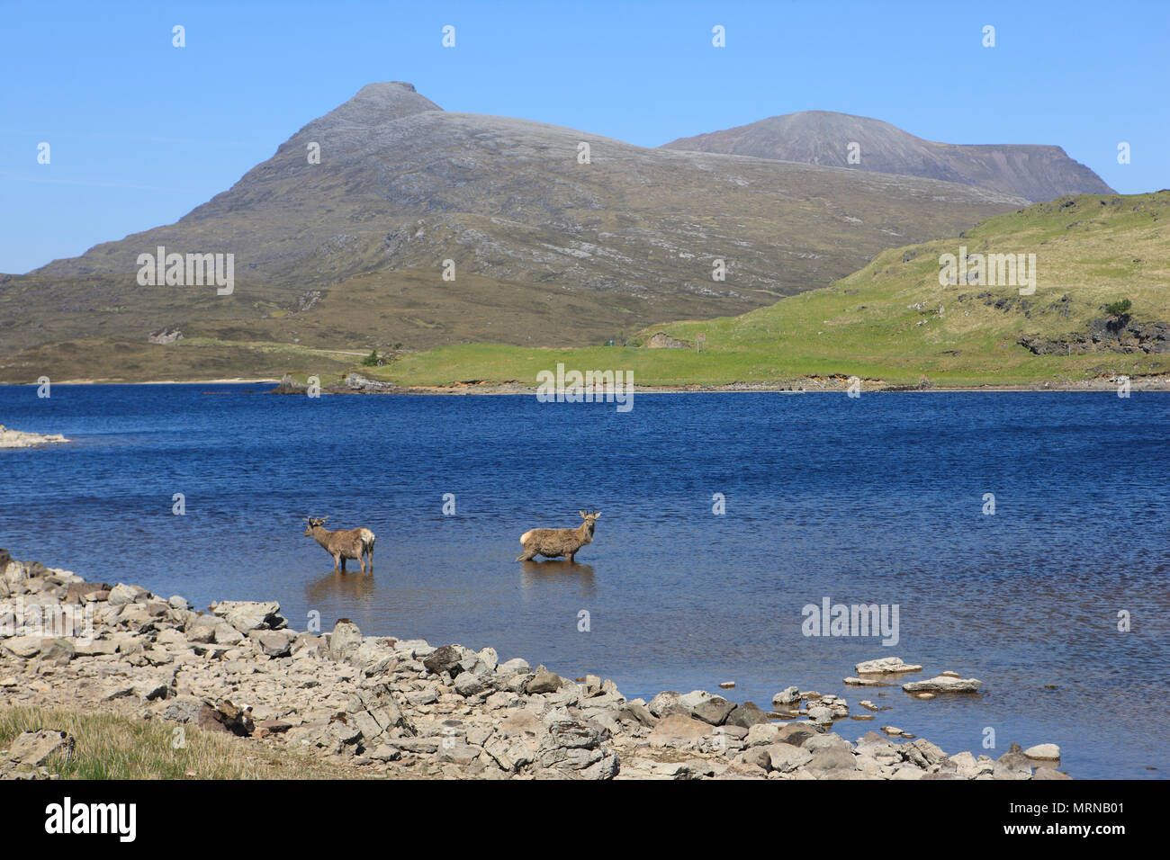 loch-assynt-uk-26-may-2018-summer-temper