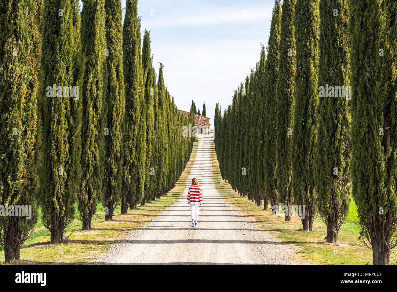 Castiglione d'Orcia, Orcia valley, Siena, Tuscany, Italy. A young woman in casual clothes is walking along a country road Stock Photo