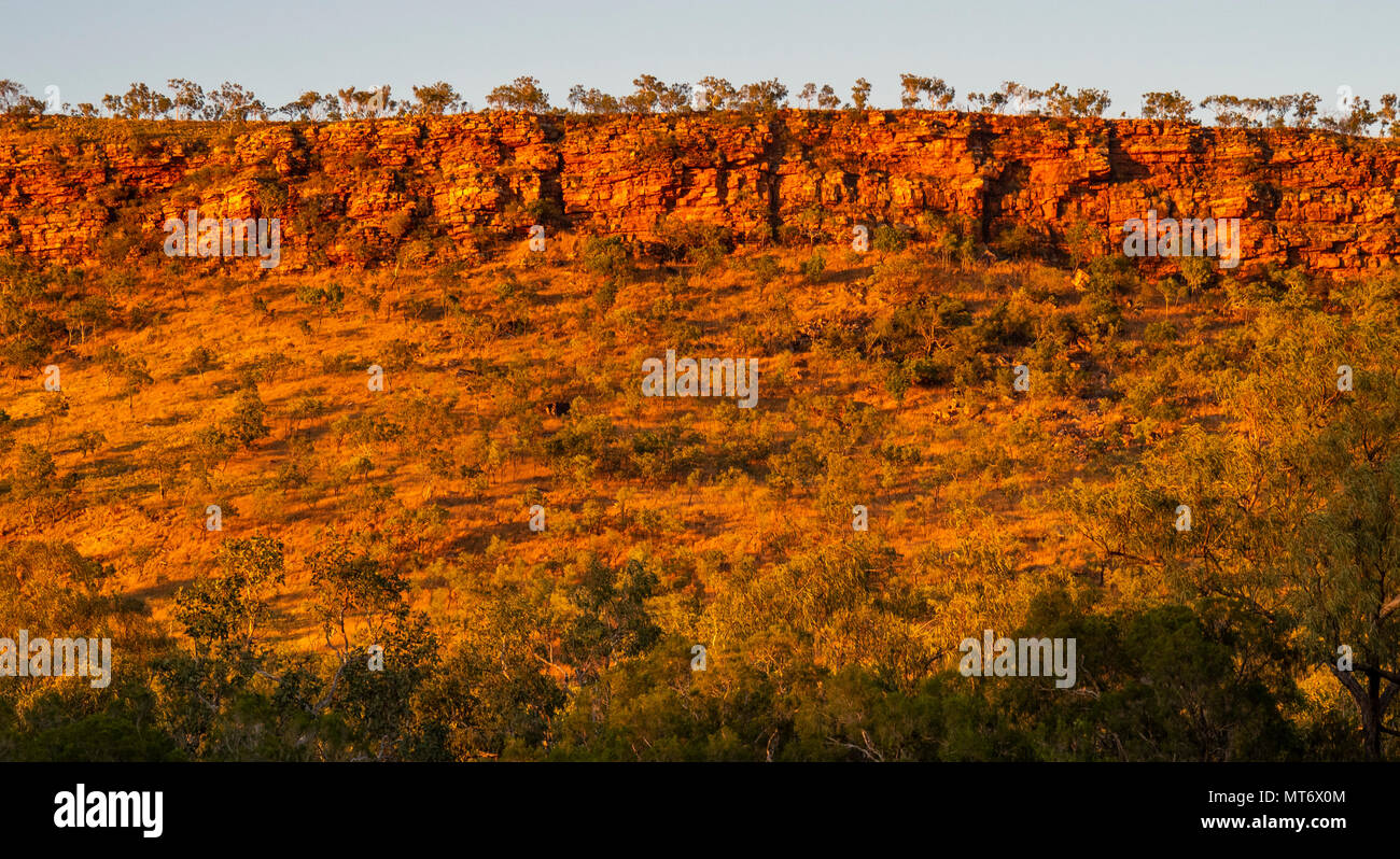 the-red-sandstone-cliffs-of-the-king-leopold-ranges-at-sunset-camping-at-imintji-campground-during-the-gibb-challenge-2018-kimberley-wa-australia-MT6X0M.jpg
