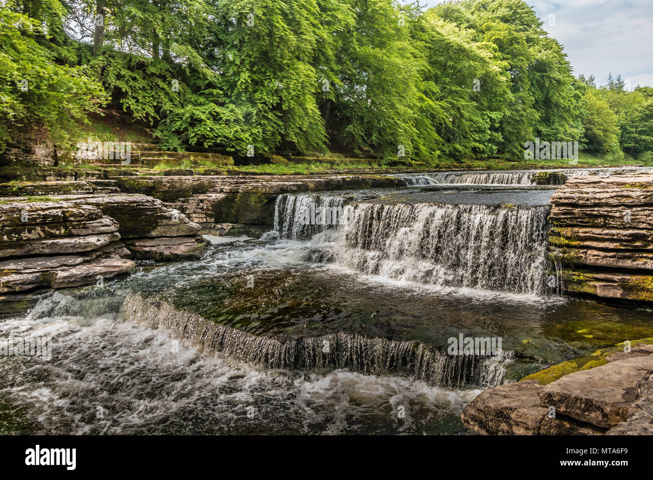 Lower Falls, Aysgarth, Wensleydale, Yorkshire Dales National Park, UK in late spring with very low water level Stock Photo