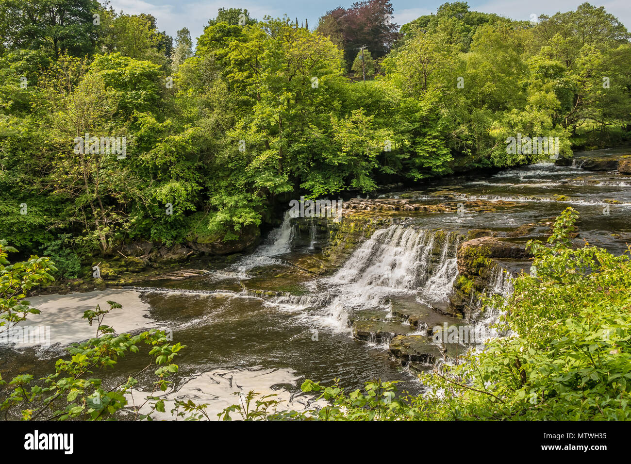 Middle Falls, Aysgarth, Wensleydale, Yorkshire Dales National Park, UK in late spring with very low water level Stock Photo