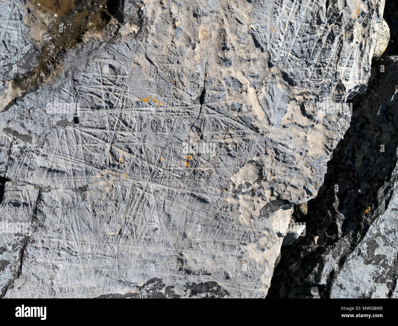 closeup-of-multi-directional-glacial-scouring-on-mudstone-rock-shown-in-foreground-of-alamy-image-mwgbw2-glen-scaladal-bay-isle-of-skye-scotland-uk-MWGBW0.jpg