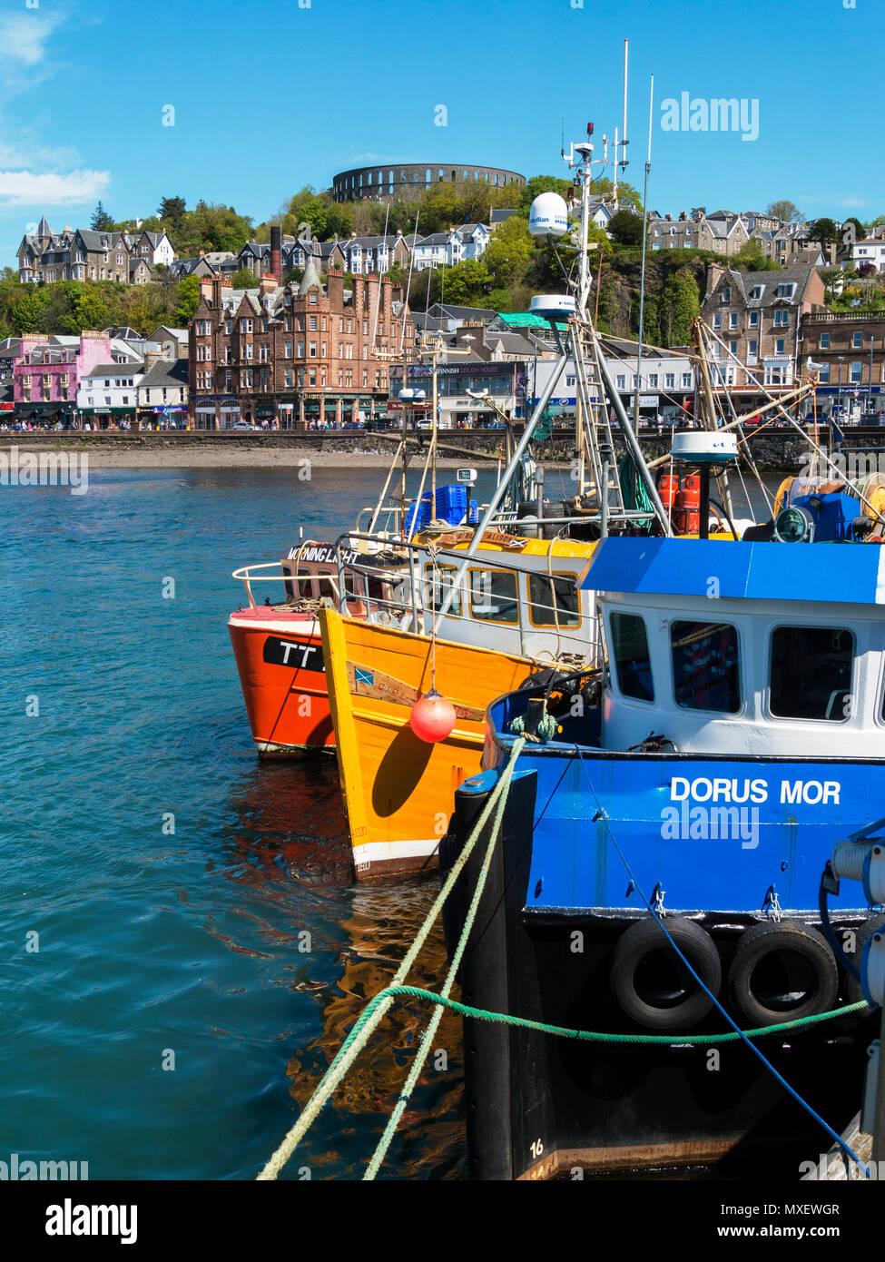 Colourful fishing boats moored in Oban harbour, Argyll and Bute, Scotland, UK Stock Photo