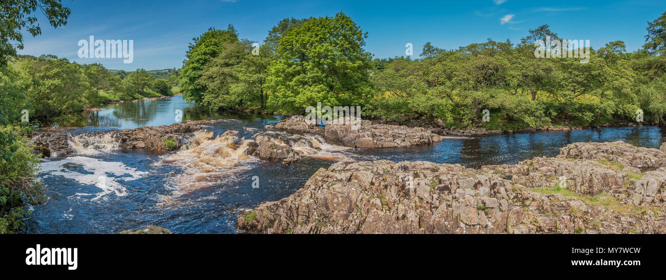 a-panoramic-view-of-the-river-tees-betwen-low-force-and-high-force-waterfalls-teesdale-north-pennines-aonb-uk-from-the-peniine-way-in-summer-MY7WCW.jpg