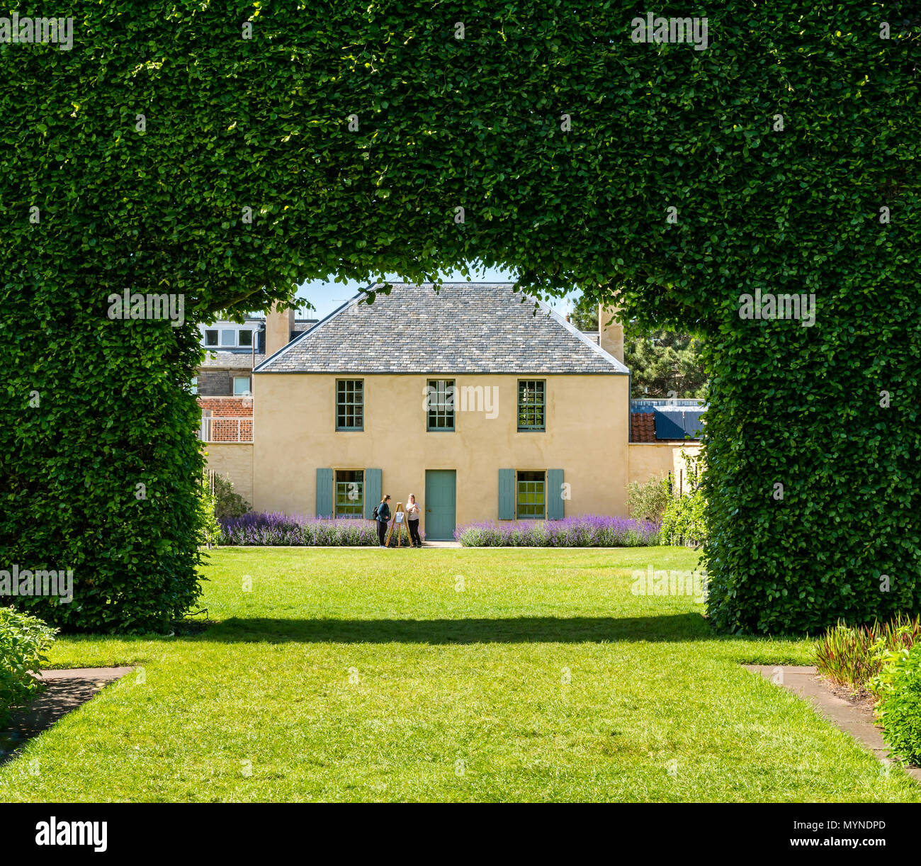 botanic-cottage-through-giant-beech-hedg
