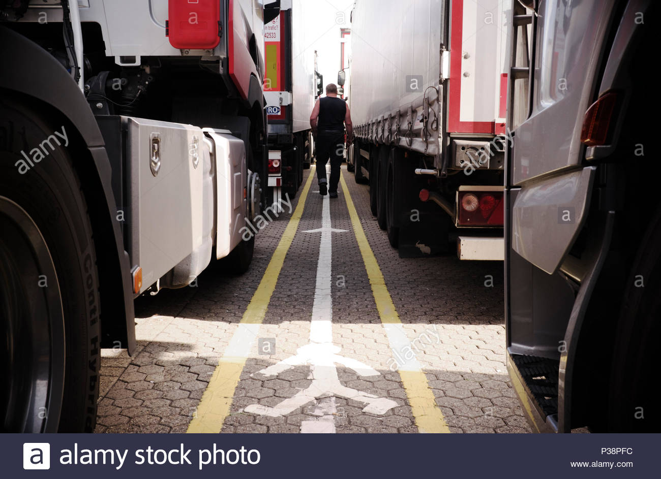 A lorry driver strolls amongst the waiting trucks whilst waiting to board the Dover to Calais ferry service. Dover port, Kent, UK. Stock Photo