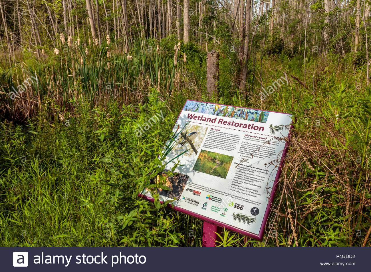 interpretive-trail-sign-beside-the-resto