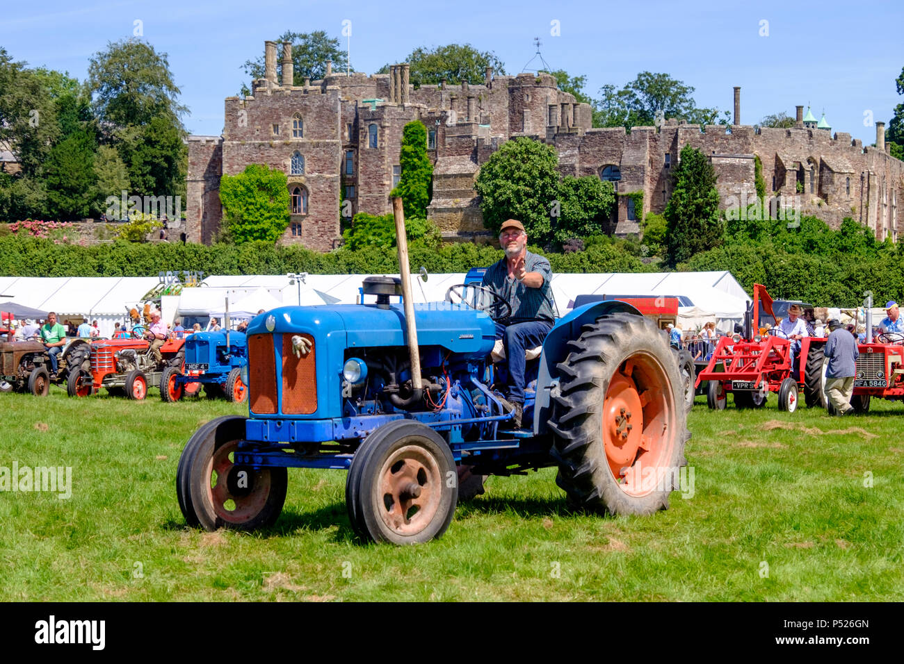 gloucestershire-uk-24th-june-2018-the-annual-berkeley-show-is-held-in-the-lee-of-historic-berkeley-castle-it-is-an-opportunity-for-local-country-business-to-network-local-crafts-are-displayed-farriers-hold-demonstrations-and-contests-and-tractors-are-polished-and-paraded-local-animals-were-present-as-well-as-alpacas-who-are-always-popular-mr-standfastalamy-live-news-P526GN.jpg