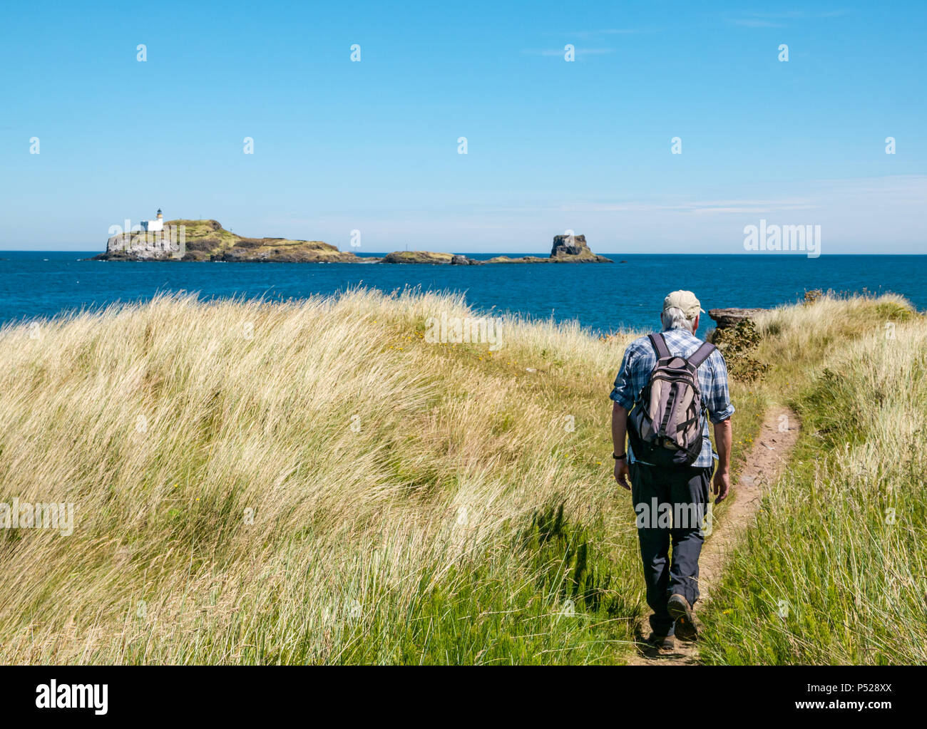 John Muir Way, East Lothian, Scotland, UK, 24th June 2018. UK Weather: A warm sunny day with a light breeze made perfect conditions for Sunday leisure pursuits on the coast today. An older man walks along the coastal path with a view of the lighthouse on Fidra Island, reputedly the inspiration for Robert Louis Stevenson's novel Treasure Island. Credit: Sally Anderson/Alamy Live News Stock Photo