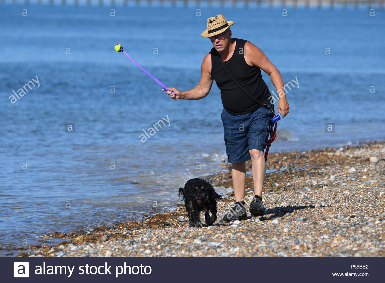 Littlehampton, UK. Monday 25th June 2018. A man walks a dog on the beach on a very warm and sunny morning in Littlehampton, on the South Coast. Credit: Geoff Smith / Alamy Live News. Stock Photo