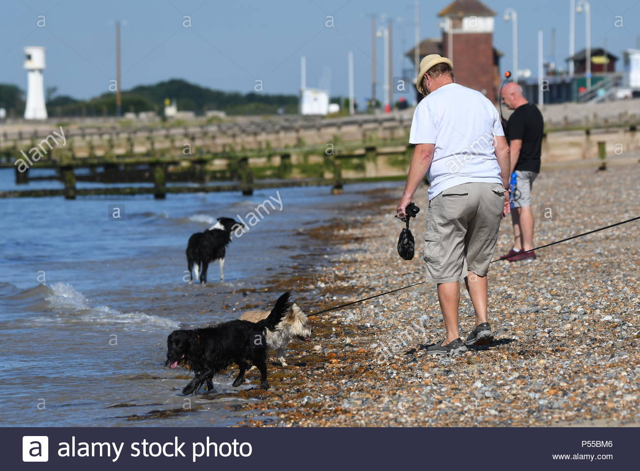 Littlehampton, UK. Monday 25th June 2018. People walk dogs by the sea on a very warm and sunny morning in Littlehampton, on the South Coast. Credit: Geoff Smith / Alamy Live News. Stock Photo