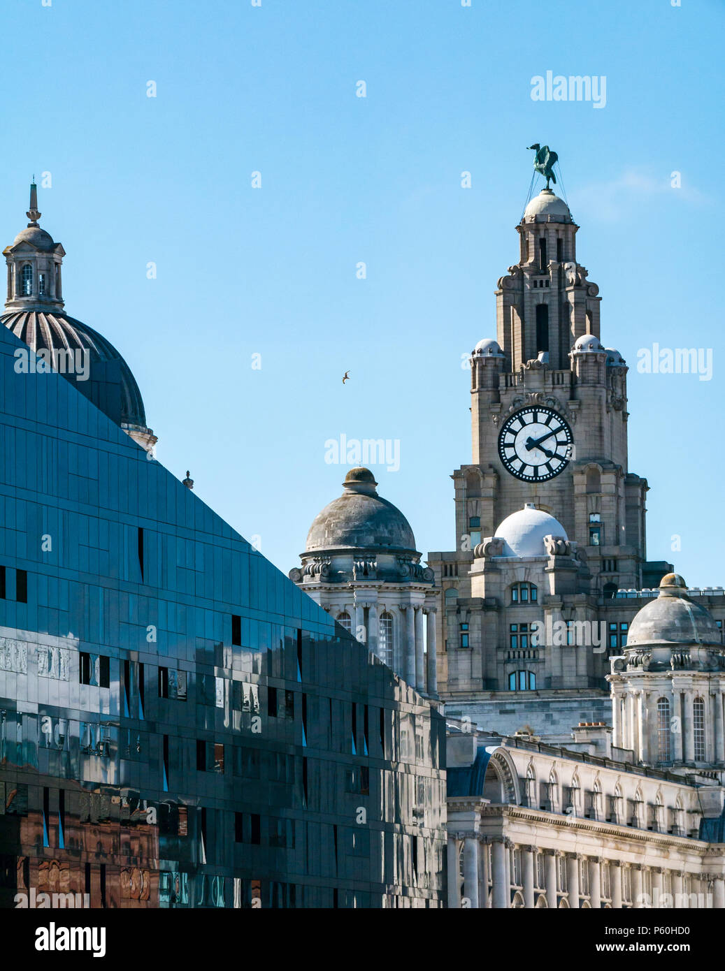 view-of-tower-of-royal-liver-building-wi
