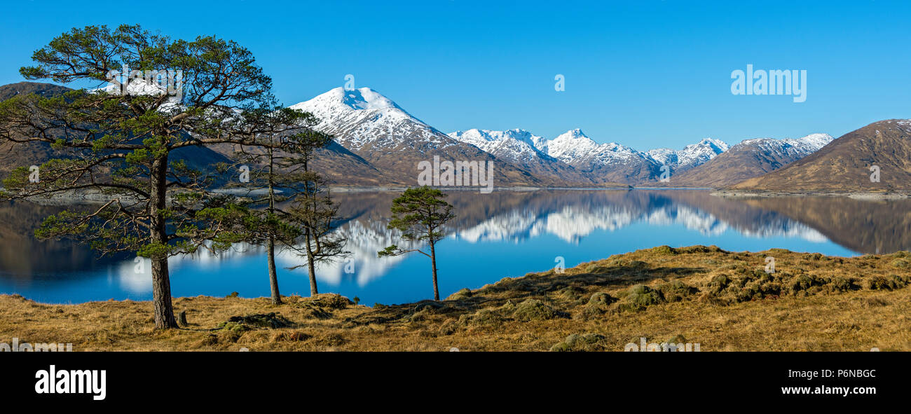 sgrr-mr-sgrr-na-ciche-and-the-mountains-of-knoydart-over-loch-quoich-loch-chuaich-glen-garry-highland-region-scotland-uk-P6NBGC.jpg