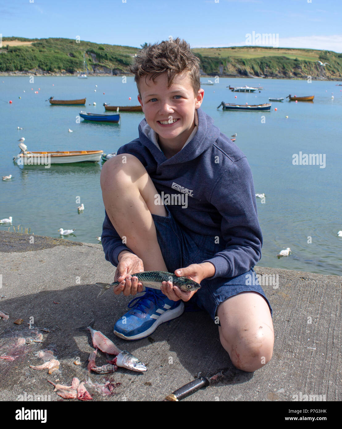 castletownshend-west-cork-ireland-6th-july-2018-the-heat-wave-continues-in-west-cork-and-the-local-mackerel-fishing-trips-for-holiday-makers-are-making-the-most-of-it-stephen-kearney-just-returned-from-a-mackerel-fishing-trip-with-his-father-seen-here-filleting-his-catch-for-supper-the-lad-has-all-the-makings-of-a-fine-fisherman-temperatures-are-expected-to-remain-high-for-the-rest-of-the-week-credit-aphperspectivealamy-live-news-P7G3HK.jpg
