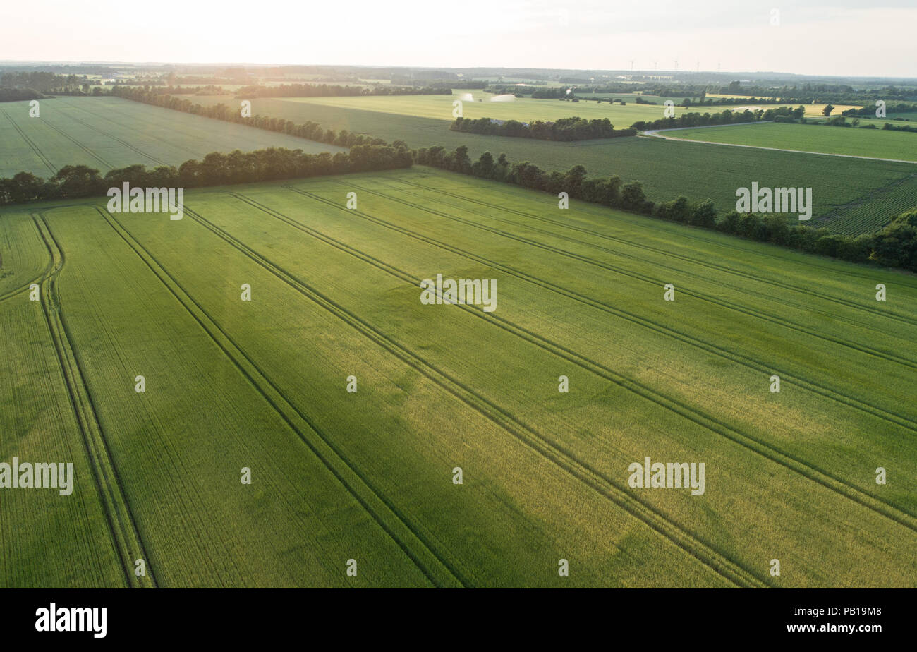 aerial-view-of-rural-denmark-with-seemin