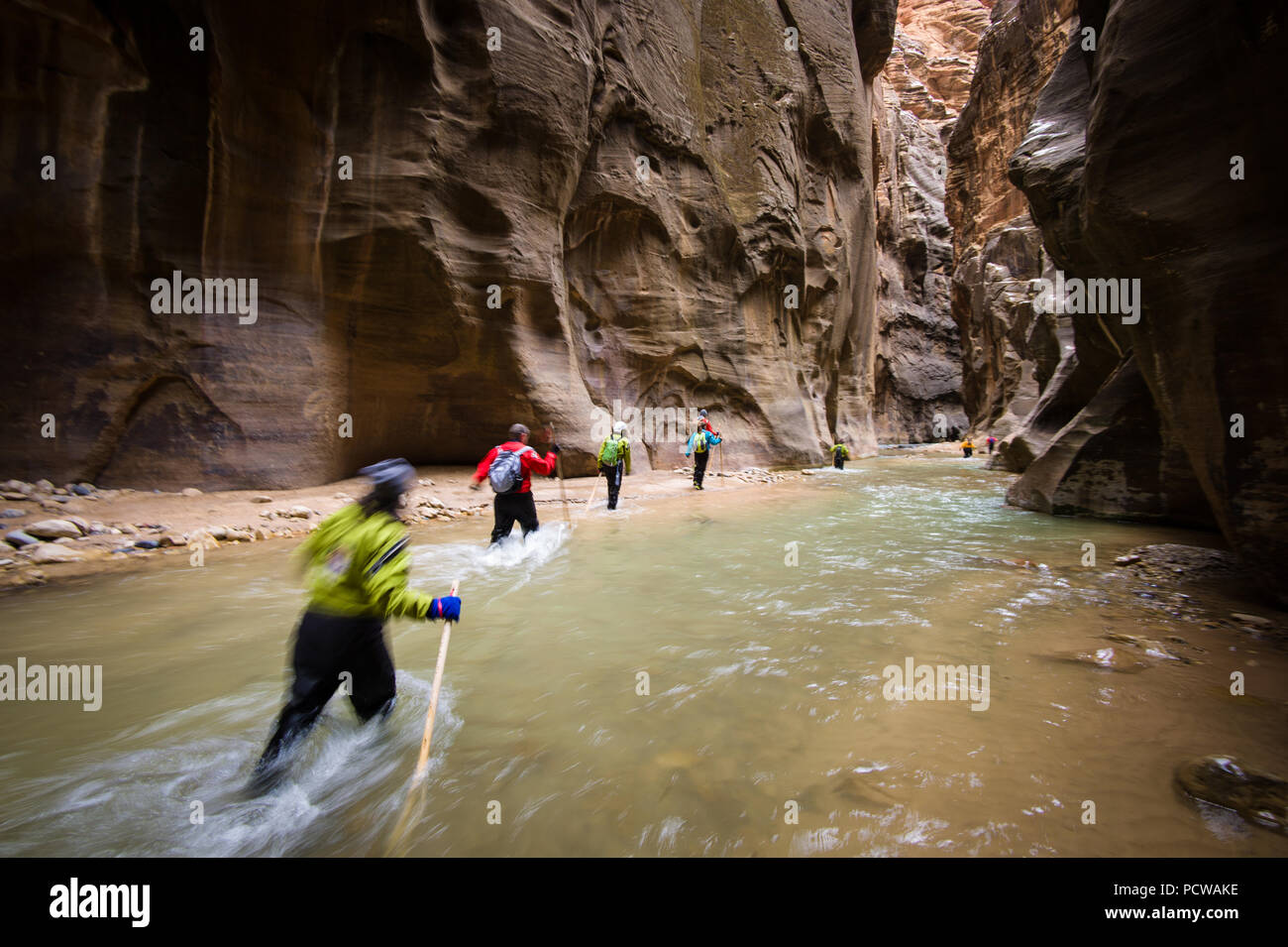 Hiking Zion National Park's famous slot canyon, The Narrows, in winter requires a dry suit and warm clothes. It's much less crowded than in the summer. Stock Photo