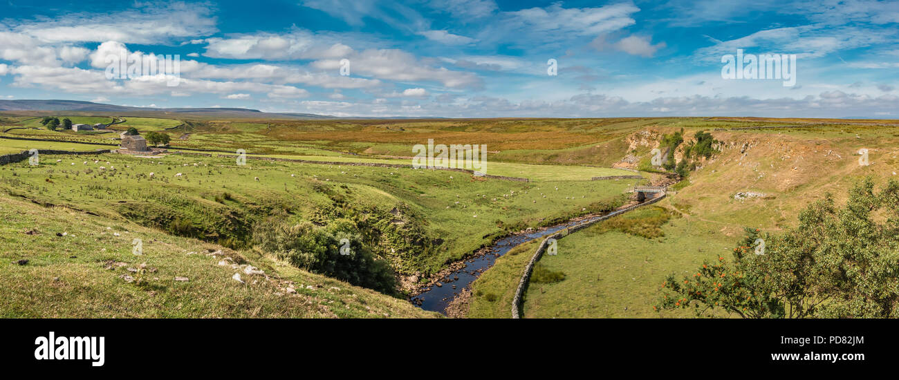 north-pennines-aonb-panoramic-landscape-the-pennine-way-long-distance-footpath-crosses-sleightholme-beck-at-intake-bridge-near-bowes-county-durham-PD82JM.jpg