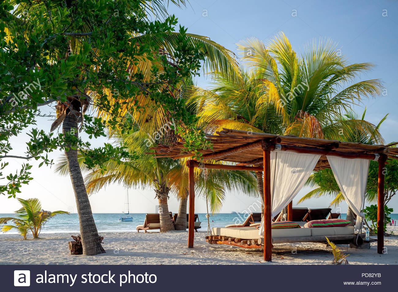 holbox-island-beach-PD82YB.jpg