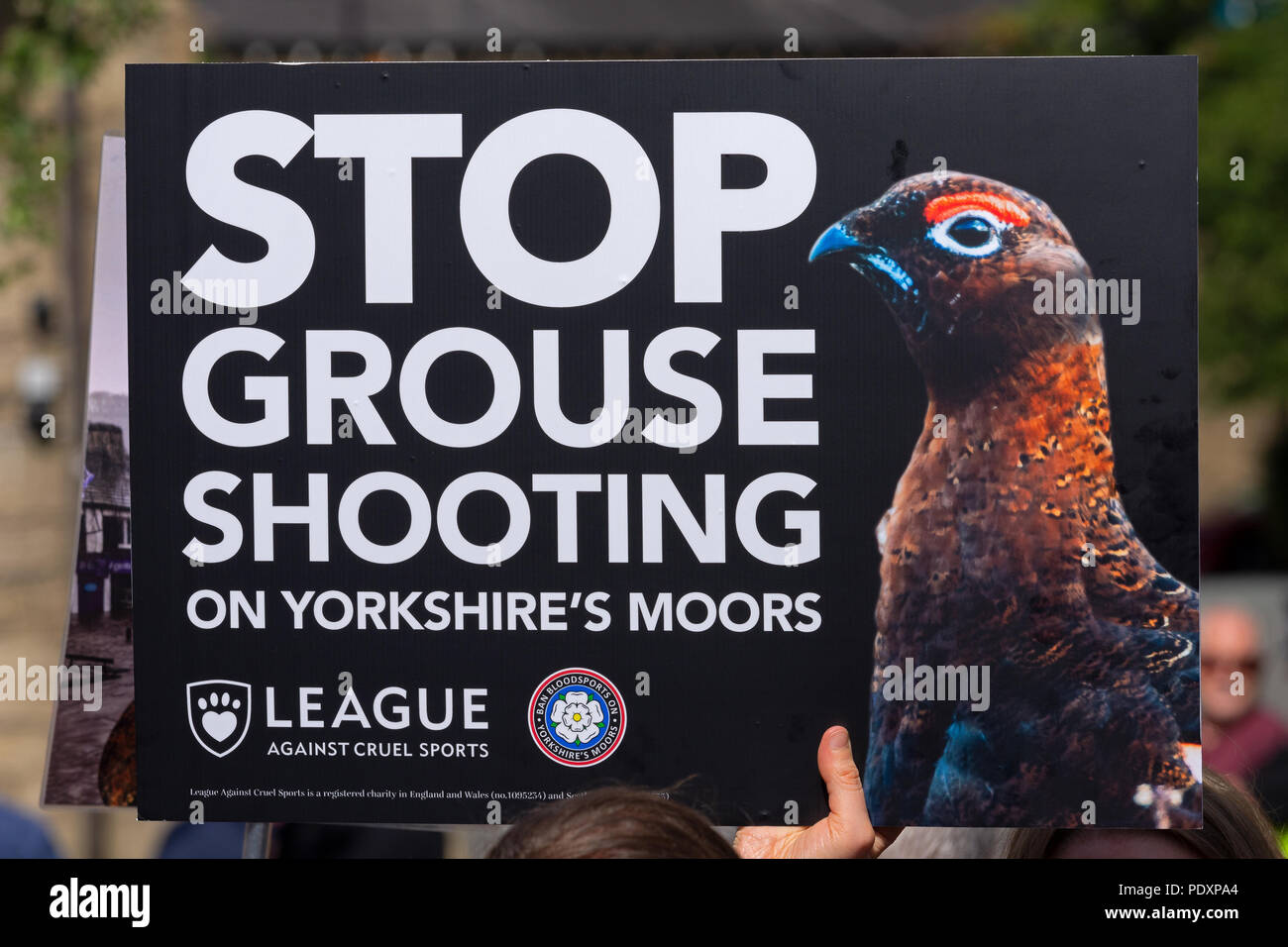 Hebden Bridge, UK. 11th August 2018. Rally to ban grouse shooting held in Hebden BridgeÕs St GeorgeÕs Square. The nearby uplands are let out by Yorkshire Water to grouse shooters who are accused of decimating the wildlife for sport by trap and gun, burning large sections of heather to increase game bird numbers and decimating blanket bog and contributing to flooding in the valley. The protesters urged Yorkshire Water to stop leasing land above the town for grouse shooting. The protest was organised by The League Against Cruel Sports and Ban Bloodsports on YorkshireÕs Moors. Credit: Stephen Bel Stock Photo