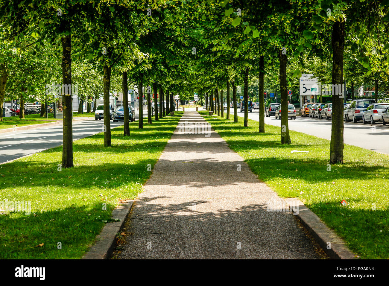 a-beautiful-view-along-the-brick-pedestrian-walkway-between-a-canopy-of-green-trees-on-the-avenue-du-president-hoover-in-lille-france-PGA0N4.jpg