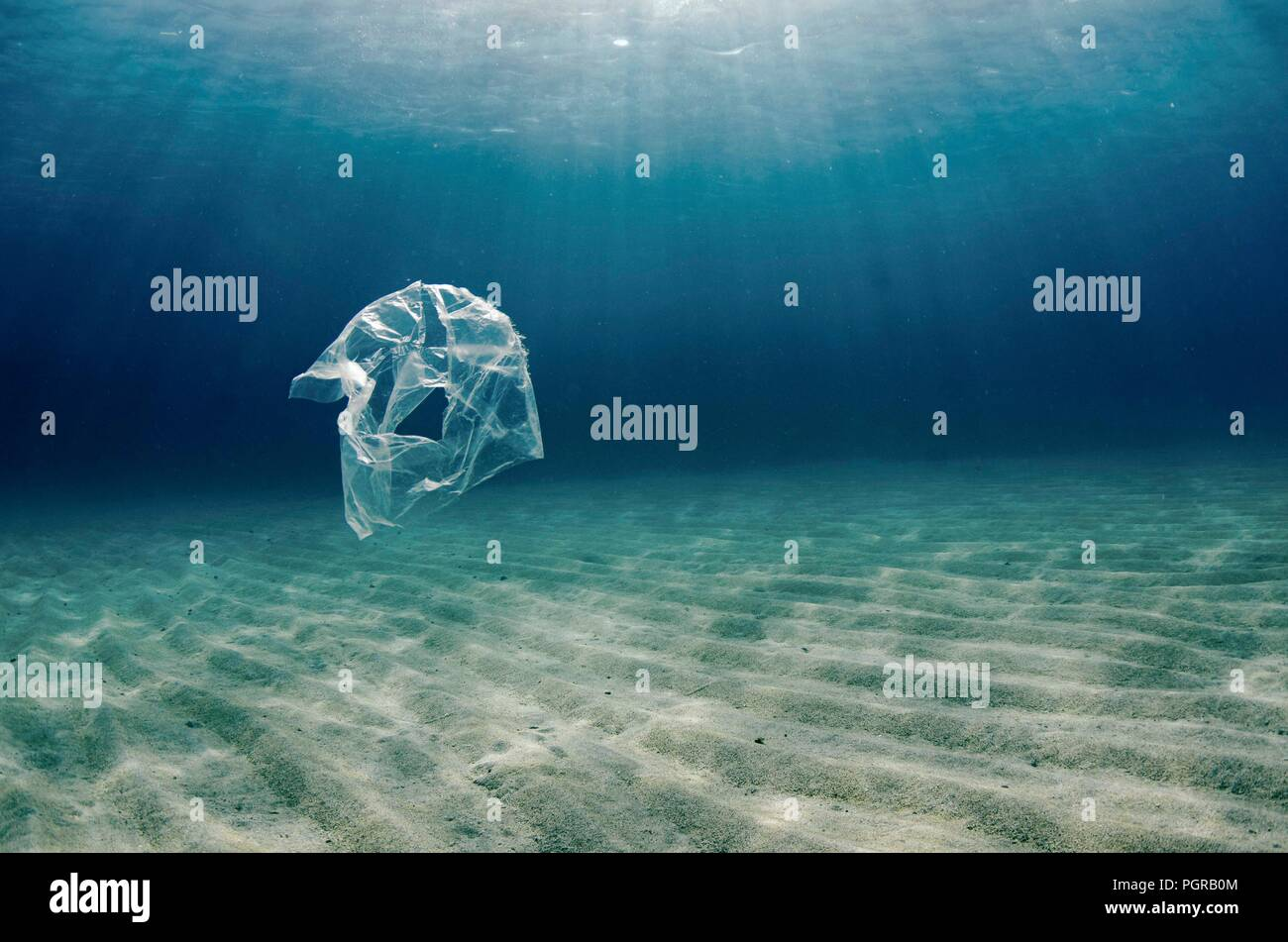A single plastic bag floats over a sea bed in Abu Dabbab, Egypt Stock Photo
