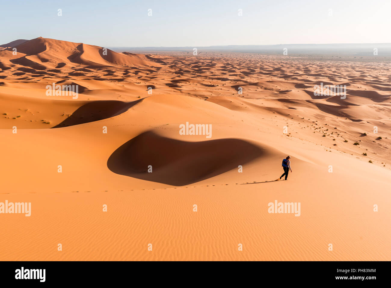 Woman running downhill, red sand dunes in the desert, dune landscape Erg Chebbi, Merzouga, Sahara, Morocco Stock Photo